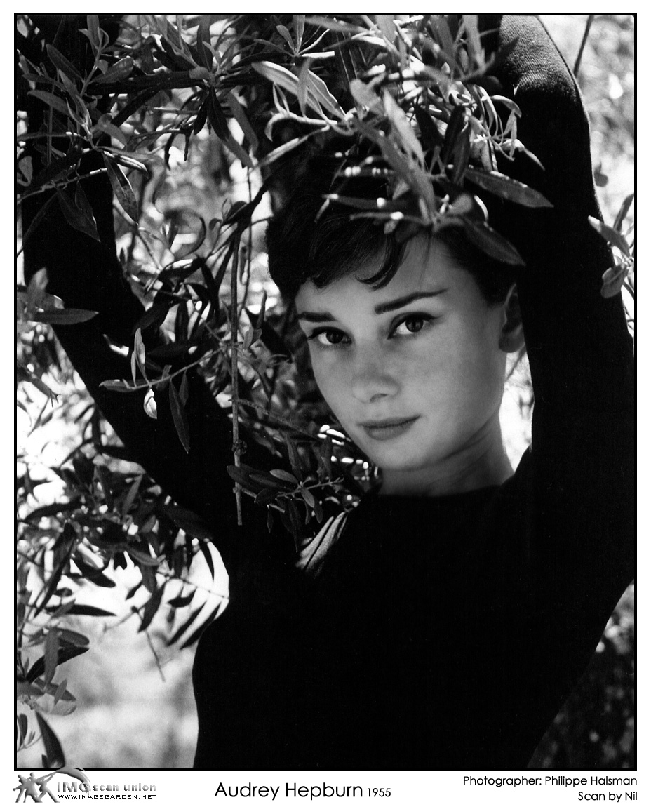 Where can i buy this poster audreyhepburn for Audrey hepburn pictures to buy
